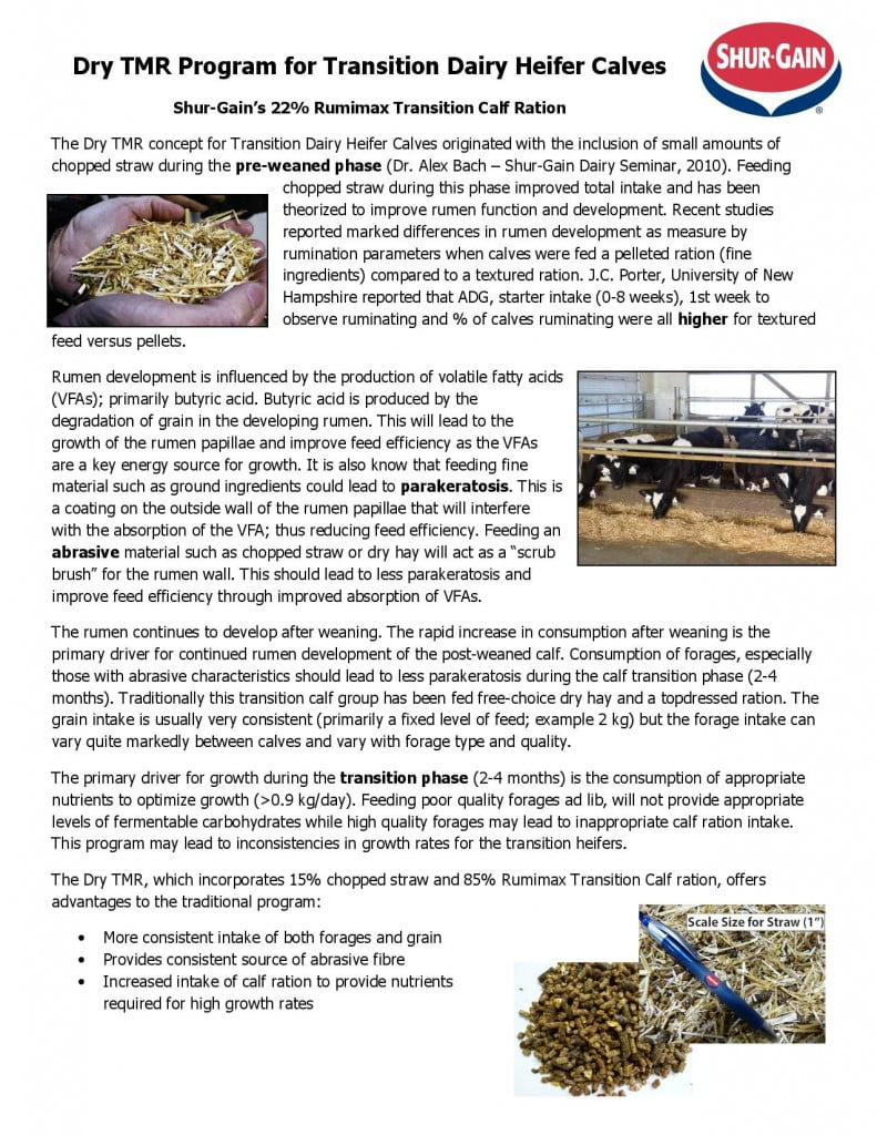 2013 Dry TMR Program for Transition Dairy Heifer Calves-page-001