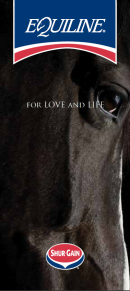 Equiline Brochure cover