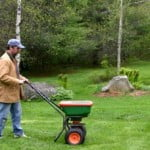 Spreading Lawn Fertilizer 2