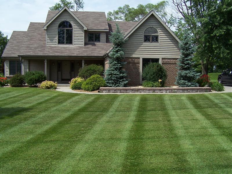 Healthy Lawn Image