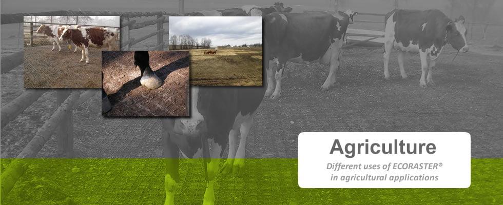 Slide6-agriculture