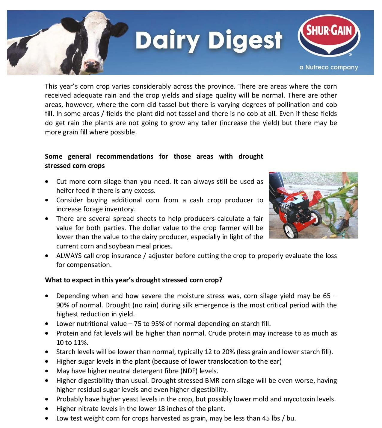 Drought Stress Corn silage and Green Chop concerns-page-001