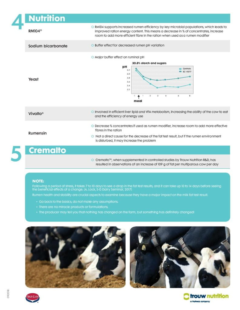 Dairy Feed & Nutrition |